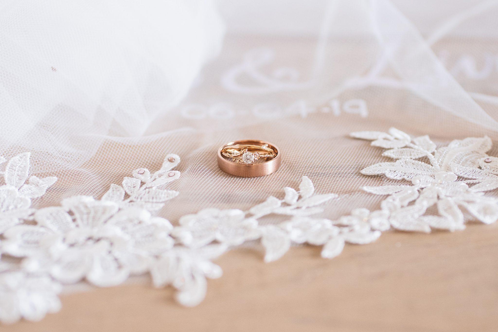 Wedding Rig Shots Ideas with the veil